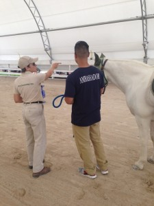 OTA Hippotherapy Oct. 2014