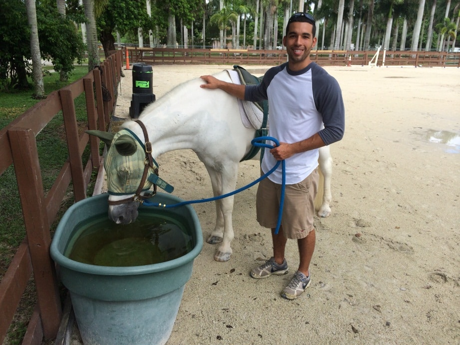 Pembroke Pines OTA students learn about Equine-Assisted Therapy