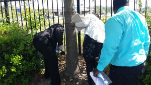 Criminial investigation April 2015 (2)