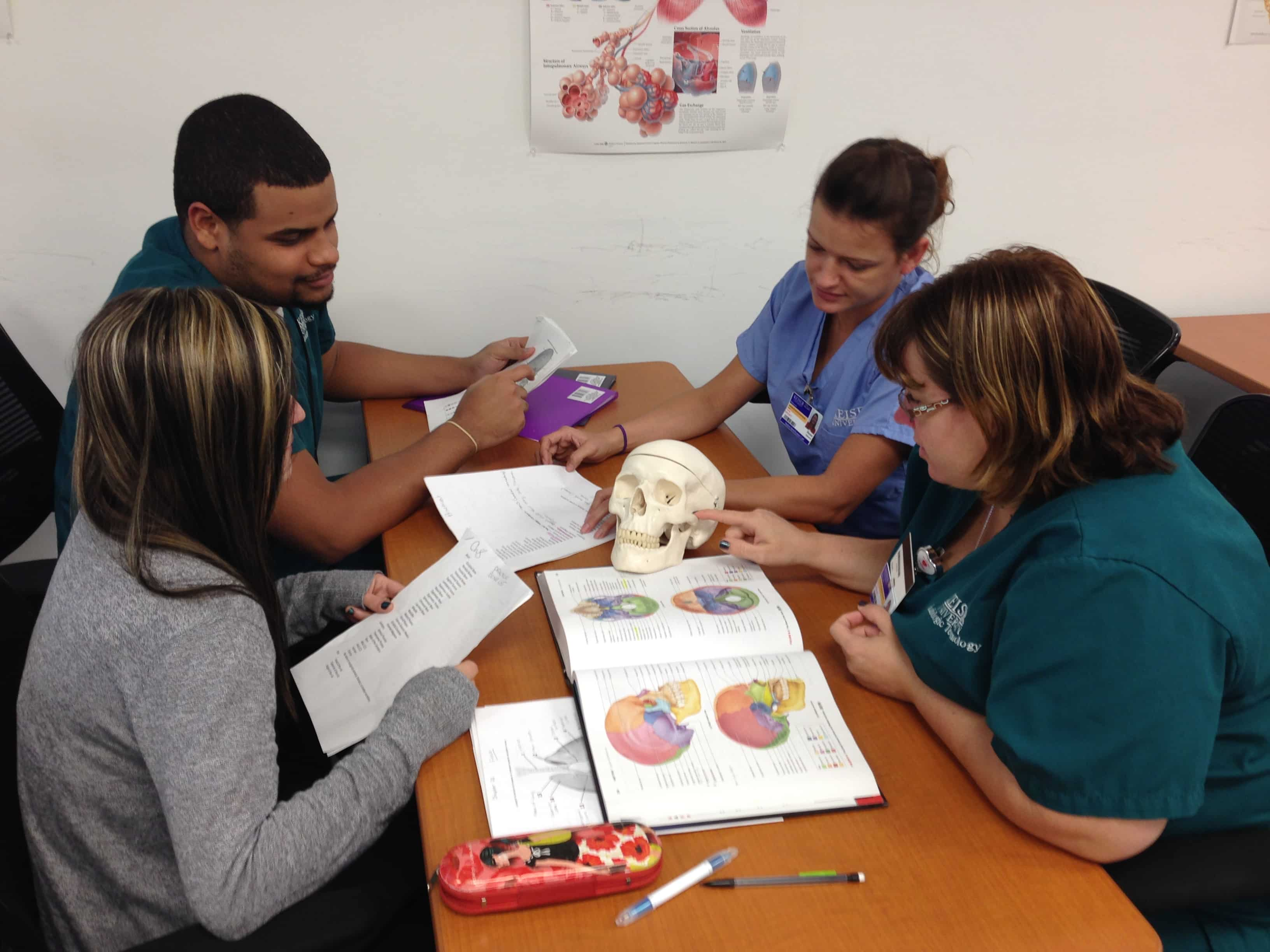 Anatomy & Physiology Students Learn about the Skeletal System in ...