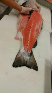 KU SAR Fileting Salmon June 2015 (1)