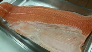 KU SAR Fileting Salmon June 2015 (2)