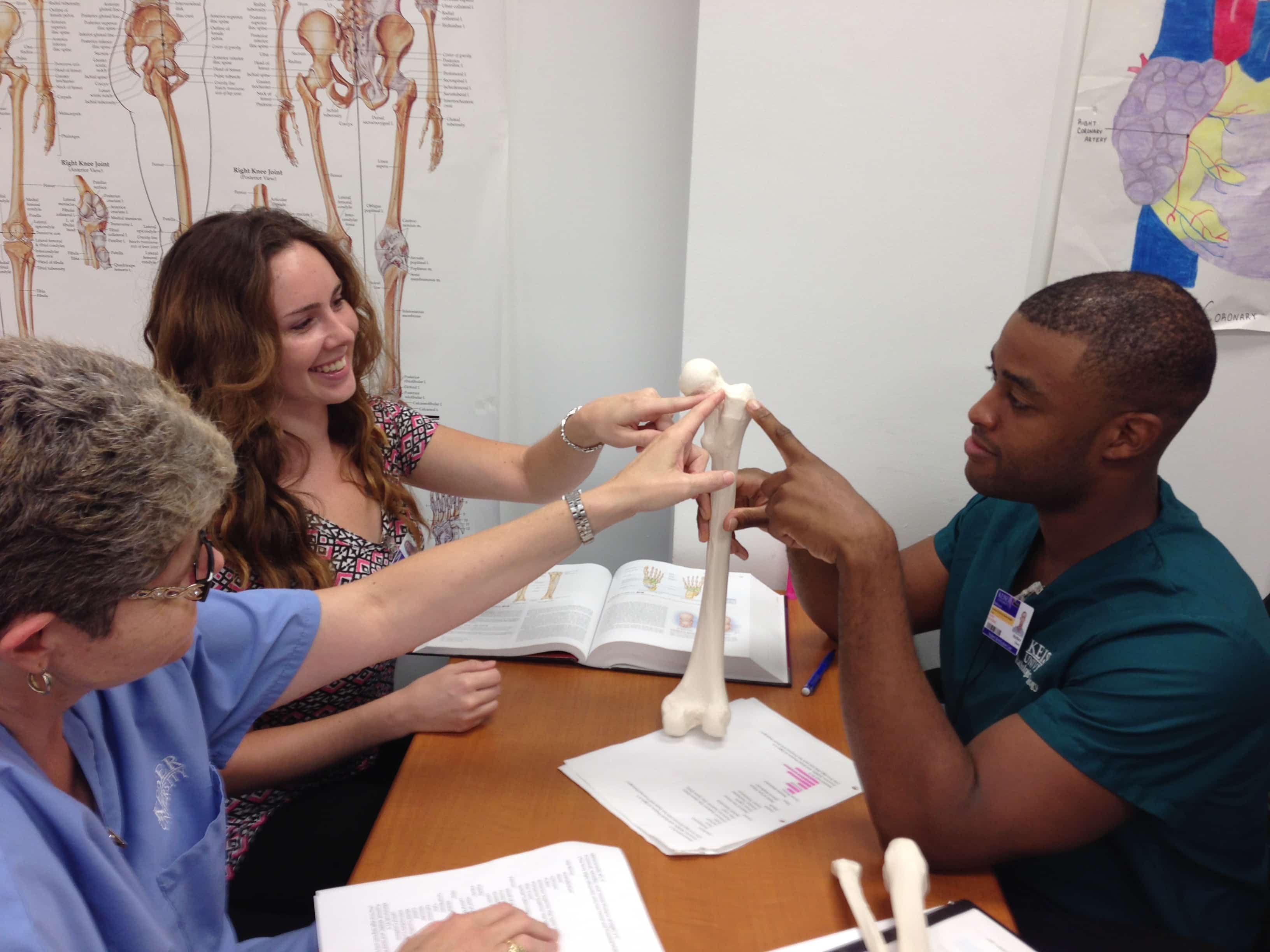 A & P Students at the Melbourne Campus Get a Lesson in Bones