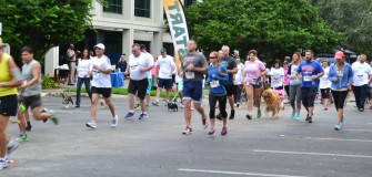 doggie dash Nov. 2015 (3)