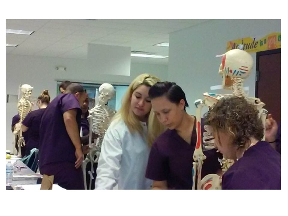 Medical Assisting  Students at the Port St. Lucie Campus Study the Skeletal System