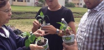 Garden for nutrition month March 2016 (2)