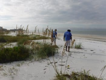 SGA beach cleanup Oct. 2016 (1)