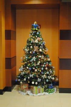 christmas-dec-2016-4