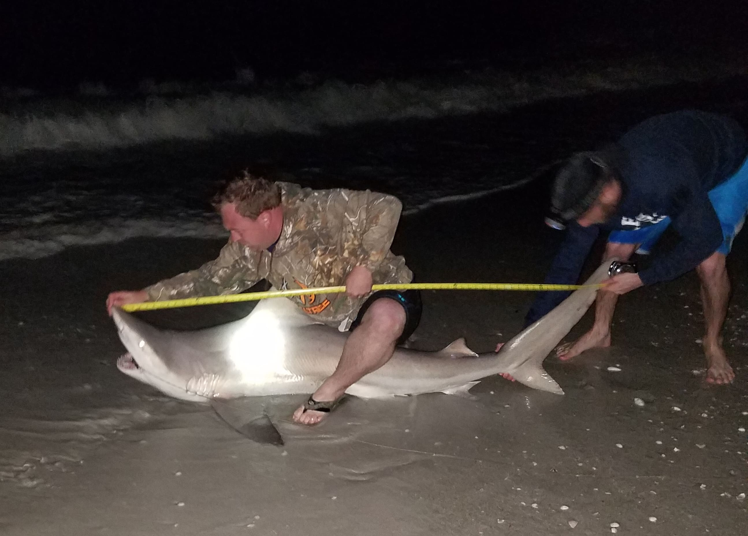 "Keiser University Fort Myers and ""Shark Hookers"" Team Up for Night of Shark Tagging"