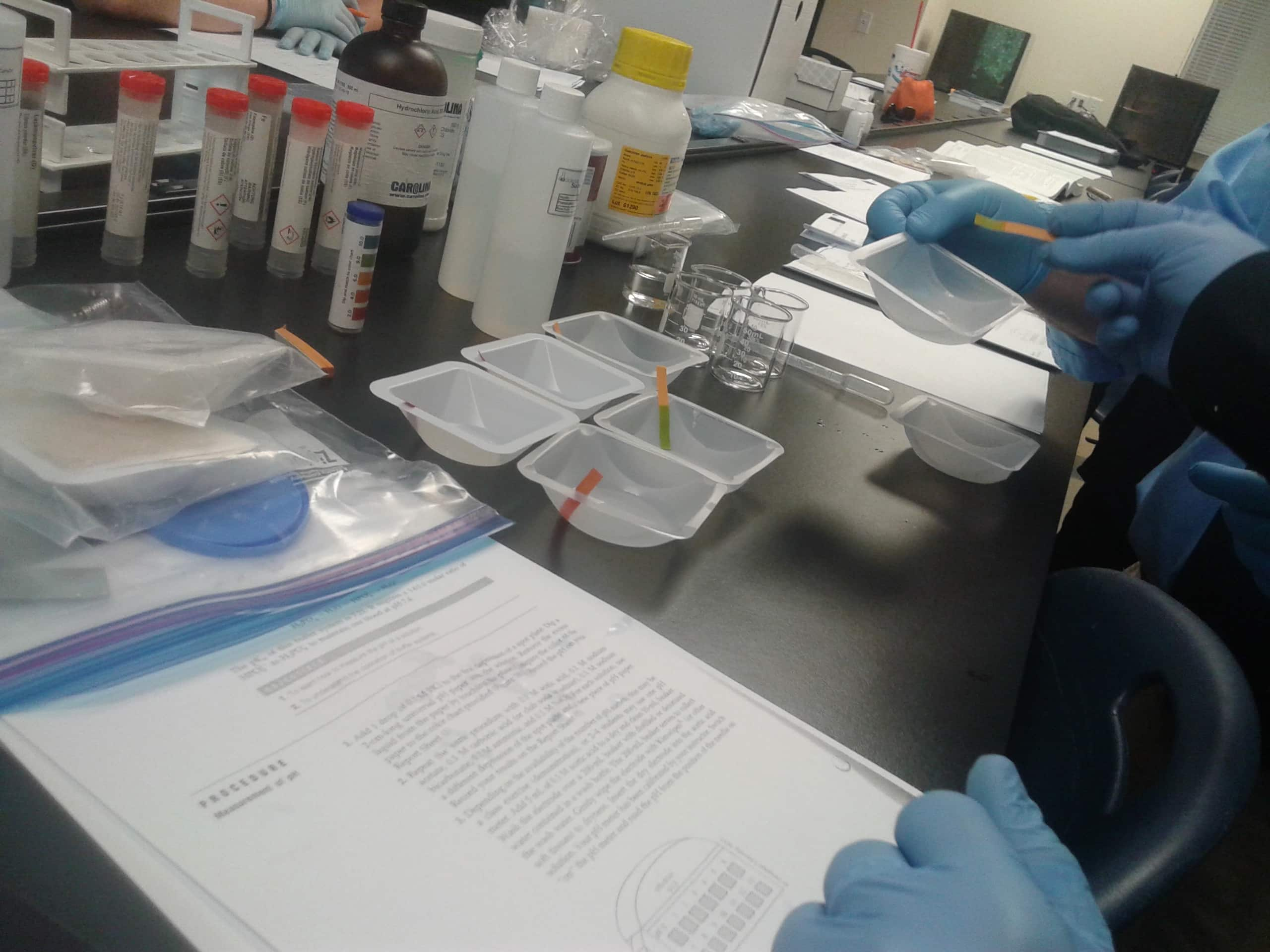 Biomedical Students Have fun Experimenting in the Classroom