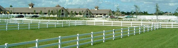 Equine Studies at Keiser University