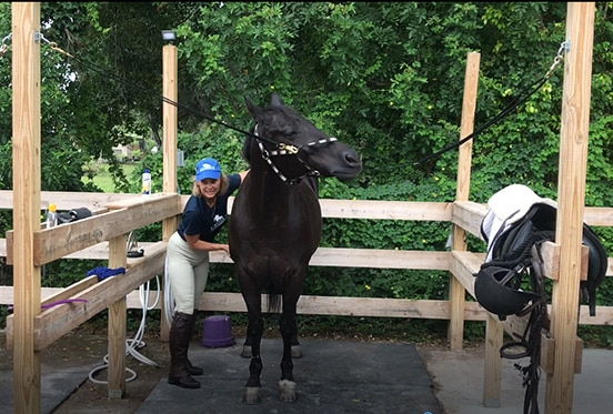 Keiser University Faculty Members Enjoy Equine Studies Program Introduction