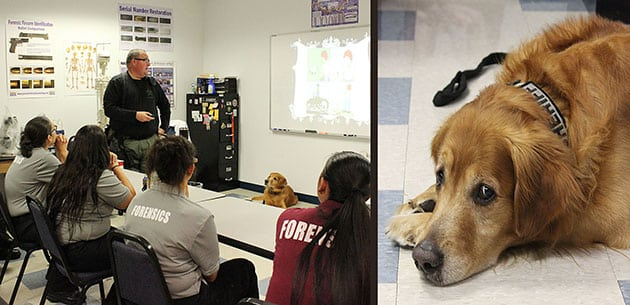 KU West Palm Beach Campus Students Thank PBSO Deputy and Canine for Valuable Lesson